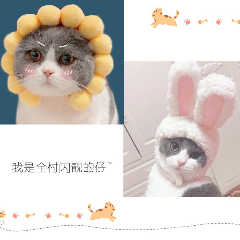 (現貨)狗耳朵帽子貓咪頭套獅子造型寵物裝飾裝扮頭飾毛絨可愛小型犬貓用(台灣出貨)
