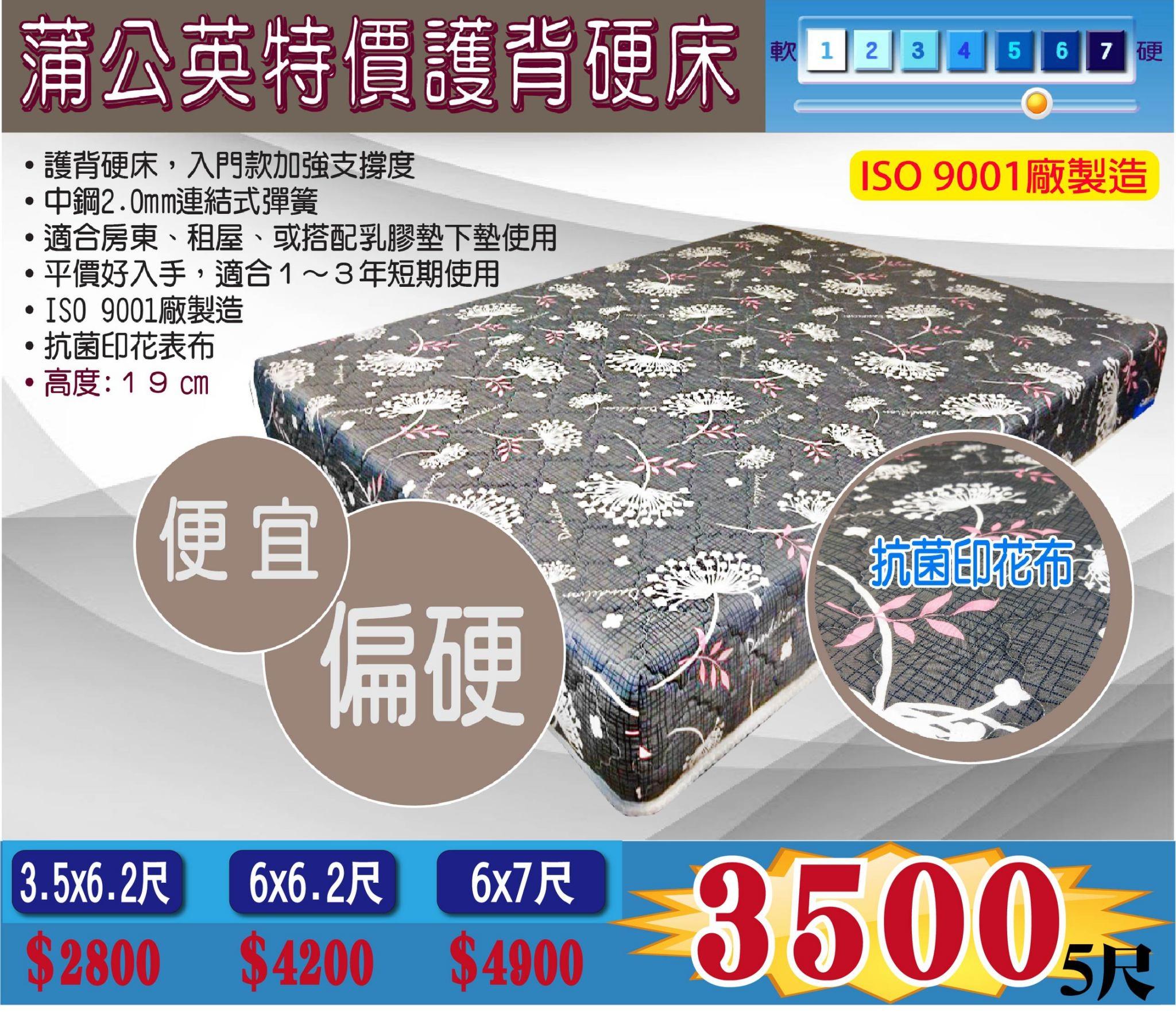 【超優惠】房東專用超便宜蒲公英護背硬床