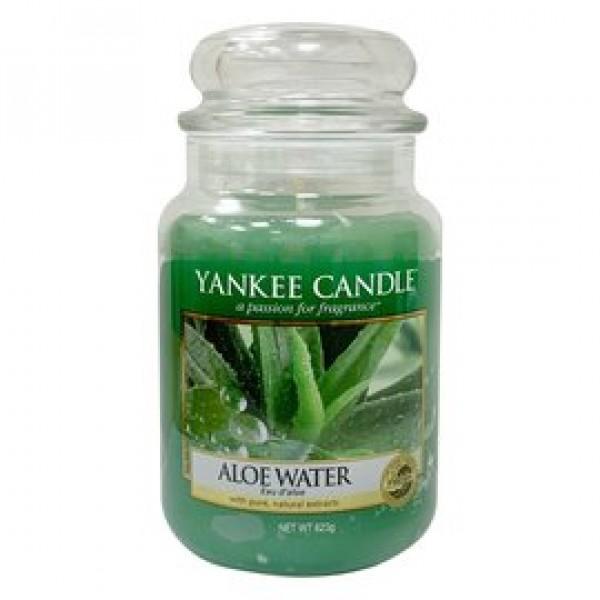 YANKEE CANDLE香氛蠟燭 蘆薈汁 623g