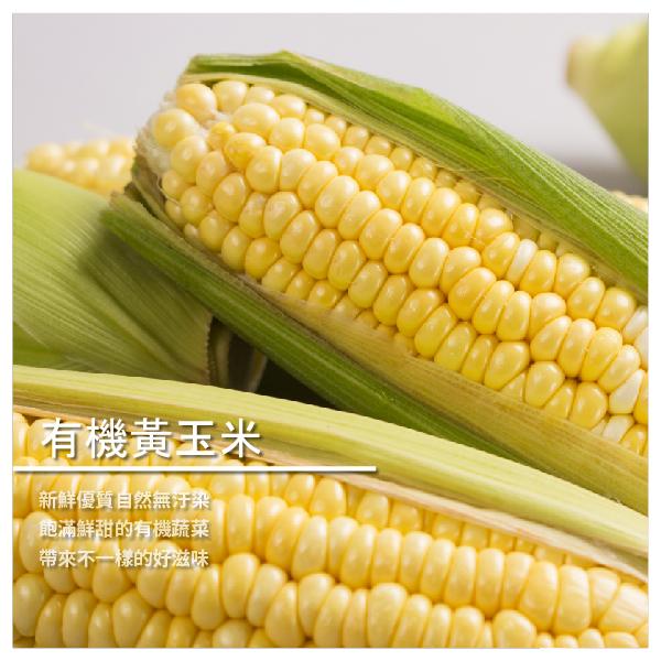 【橙莊有機農場】有機黃玉米 10kg
