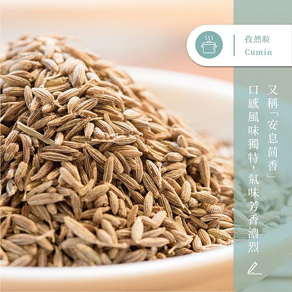 【味旅嚴選】 孜然粒 Cumin Seeds  茴香系列 100g