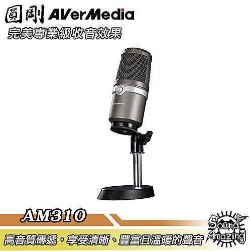 [5月促銷]圓剛 AM310 黑鳩 高音質USB麥克風 直播/演唱專用【Sound Amazing】