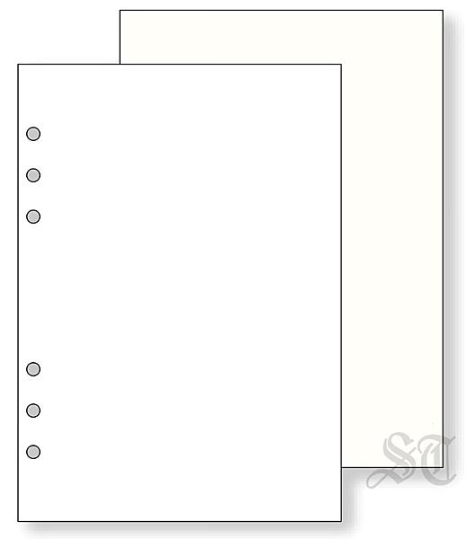 Raymay Davinci系列 全空白內頁紙100枚入 A5尺寸6孔萬用手冊 手帳用 DAR457 宣弟精品文具館