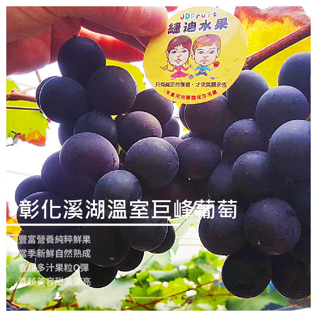 【緁迪水果】彰化溪湖溫室巨峰葡萄/3斤禮盒組