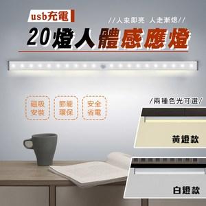 航空鋁智慧磁吸USB雙感應燈20LED白光
