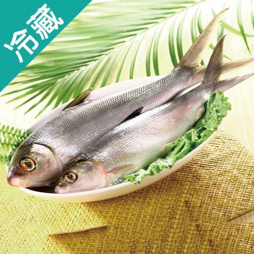 【肉質鮮甜】台灣虱目魚1尾(500~600g/尾)【愛買冷藏】