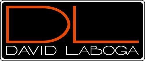 終身保固 DL David Laboga Perfection Gold (3米)電吉他導線(雙直頭)【唐尼樂器】