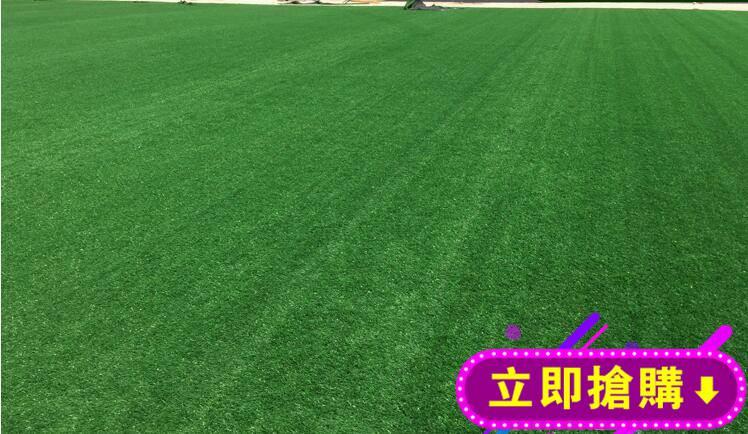 人造草坪模擬草坪草坪墻足球場草坪人工草皮高品出口草塑膠假草皮 下殺優惠