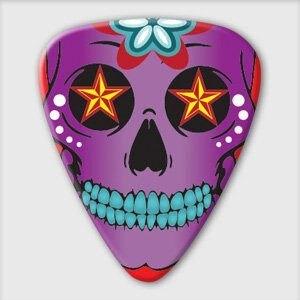 澳洲製 Grover Allman 主題系列『Sugar Skull』烏克麗麗/木吉他/電吉他 Pick 彈片【唐尼樂器】