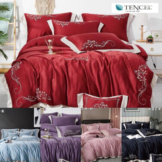 100%60支天絲刺繡兩用被薄床包組-雙人