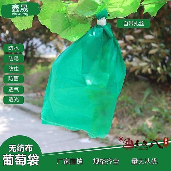 防鳥袋 葡萄套袋專用袋防鳥半透明露天防水保護袋綠色防蟲水果套袋無紡布 VK71