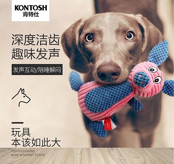 寵物玩具 發聲耐咬金毛拉布拉多大型犬泰迪幼犬小狗磨牙寵物狗用品 - 風尚3C