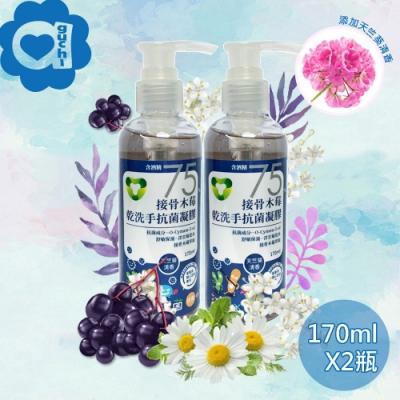 菌寶貝接骨木莓乾洗手酒精凝膠 340ml(170mlX2瓶)