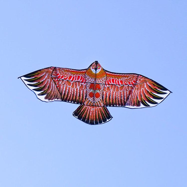 大老鷹造型風箏(1.7米前桿式)(全配/附150米輪盤線)【888便利購】
