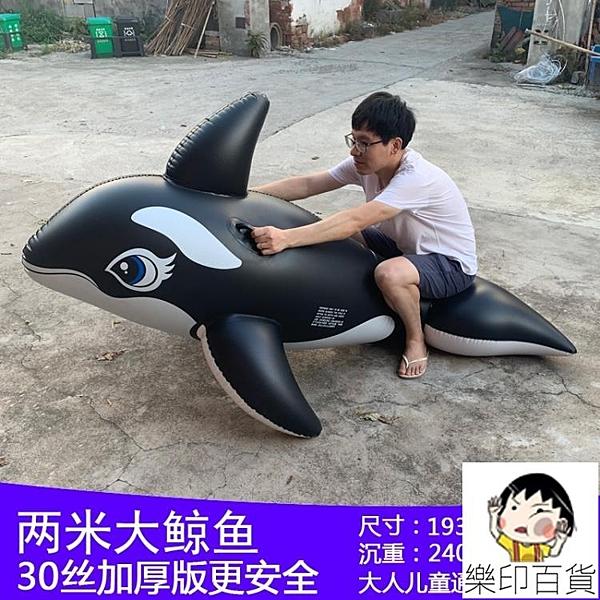超大游泳圈充氣坐騎大鯊魚水上玩具成人大人海豚黑鯨魚沖浪網紅 樂印百貨
