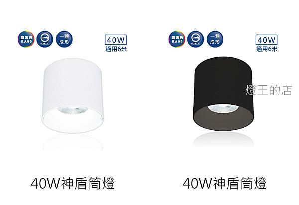 燈飾燈具【燈王的店】舞光 LED 40W 筒燈 (LED-CEA40) 白框/黑框 36° 神盾筒燈 全電壓