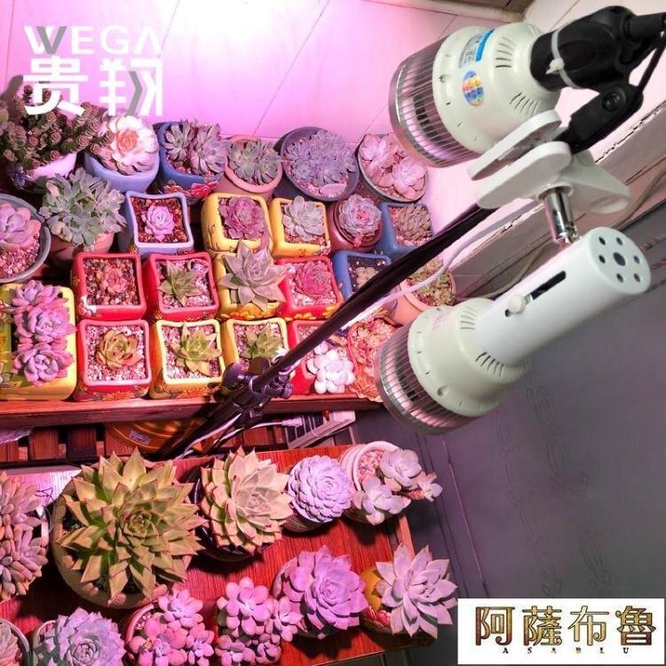 植物燈 貴翔 全光譜LED植物補光燈育苗草莓月季玫瑰花卉多肉室內生長燈  新年鉅惠 台灣現貨