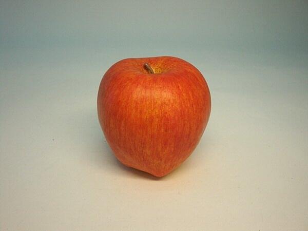 《食物模型》POLY 大富士蘋果 (霧面) - BP1024EL / JOYBUS 玩具&生活百貨