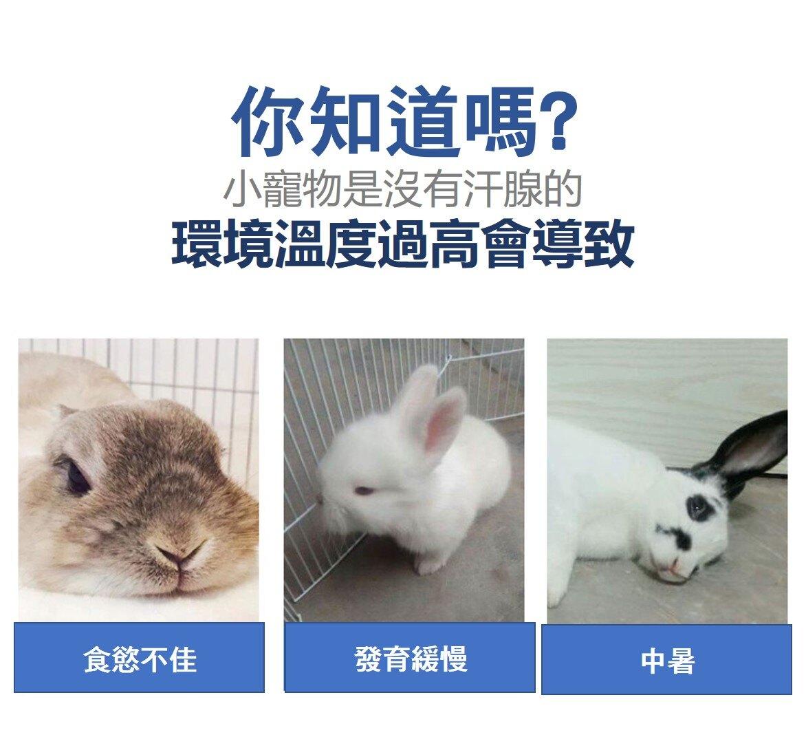 兔子涼墊 天竺鼠涼墊 刺蝟涼墊 寵物散熱板