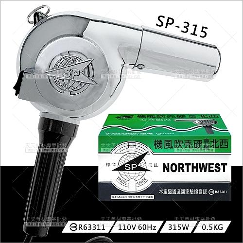 台灣西北 | 315W高級硬殼吹風機(SP-315)[12309]