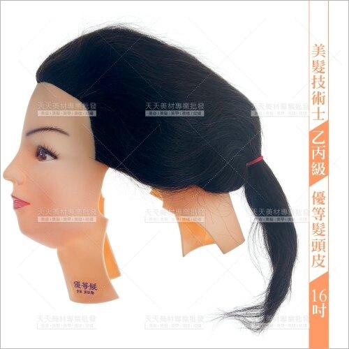 16吋(806)優等髮頭皮(美髮技術士乙丙級考試)七股神奇[11951]