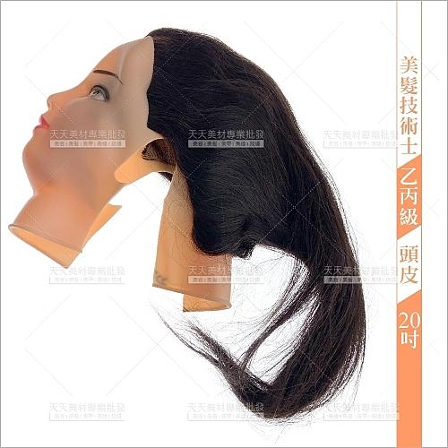 20吋頭皮-真髮(美髮技術士乙丙級考試)七股神奇[10026]