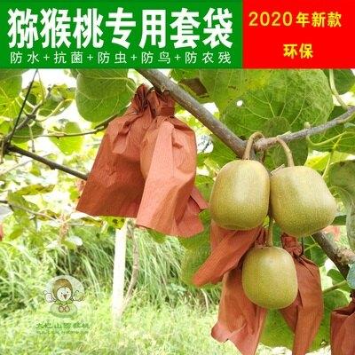 防蟲保護袋 獼猴桃專用套袋水果紙袋育果袋包裝防水防蟲防鳥12*16cm 新款 『MY6034』