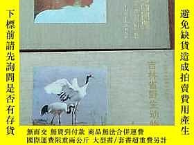 二手書博民逛書店吉林省野生動物圖鑑(全二冊)--鳥類 兩棲類.爬行類.哺乳類(彩