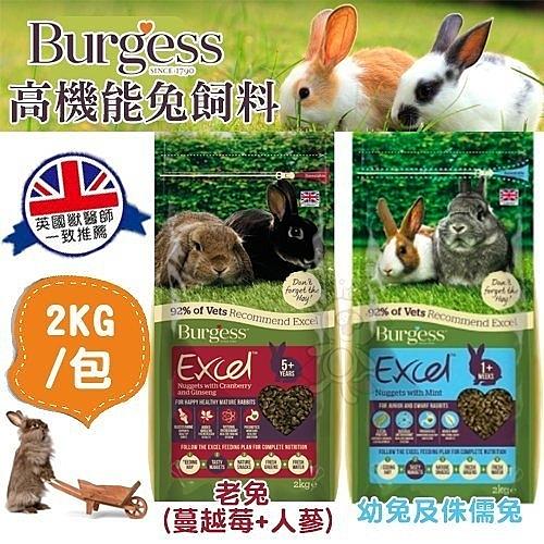 *King Wang*伯爵Burgess高機能兔飼料《幼兔 老兔 侏儒兔》2kg/包