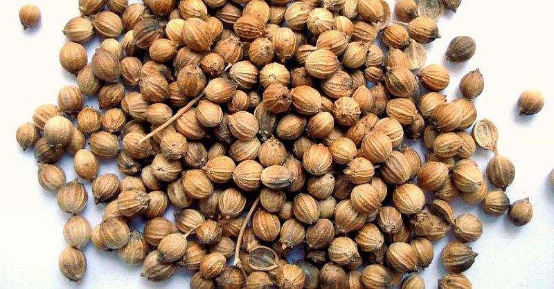 芫茜籽純露 Coriander Seed Hydrosol