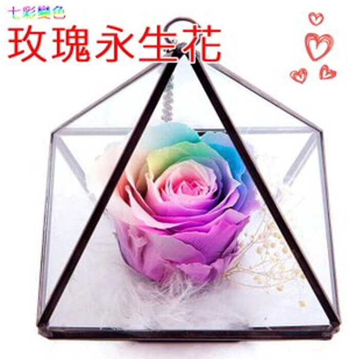 七彩變色玫瑰永生花 節慶送禮 居家裝飾 家飾 手作禮品 植物園藝 情人送禮 紀念禮品葉子小舖