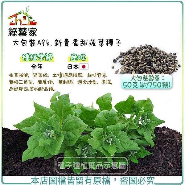 【綠藝家】 大包裝A96.新貴香甜菠菜種子50克(約750顆)