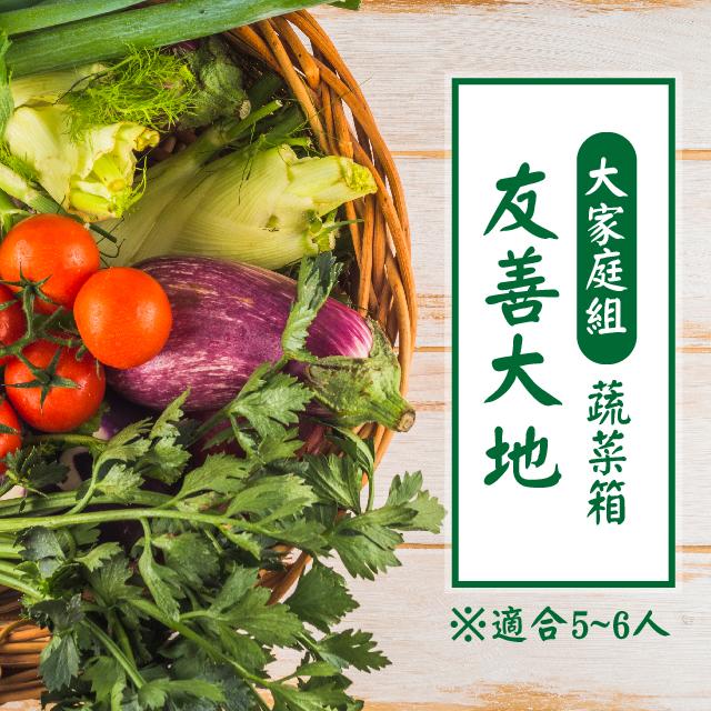 【友善大地-大家庭組蔬菜箱】