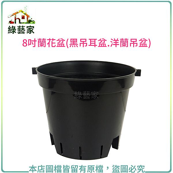 【綠藝家】8吋蘭花盆(黑吊耳盆.洋蘭吊盆)