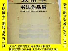 二手書博民逛書店罕見張富華書法作品集Y237426 張富華 河南美術出版社 出版