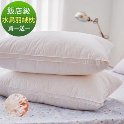 (買一送一)DUYAN竹漾-法國天然水鳥羽絨枕 台灣製