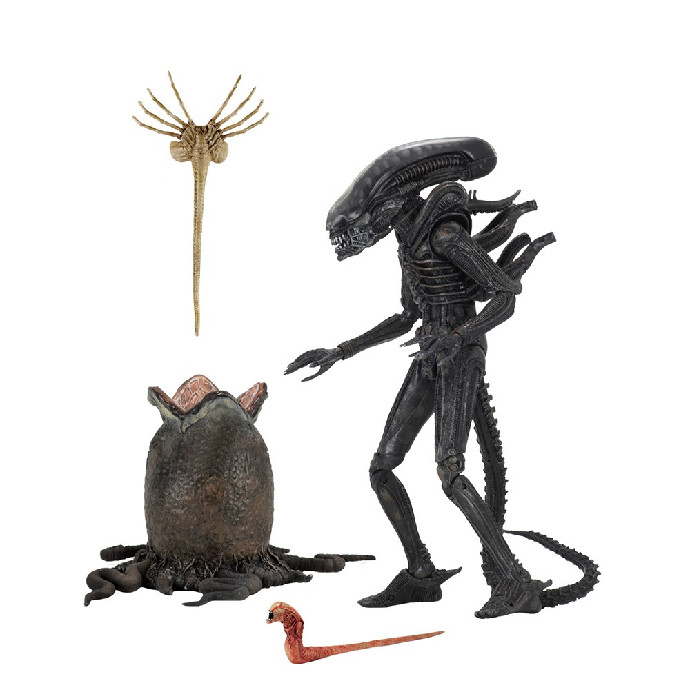 【NECA】異形 Alien Big Chap 40周年 7吋 可動