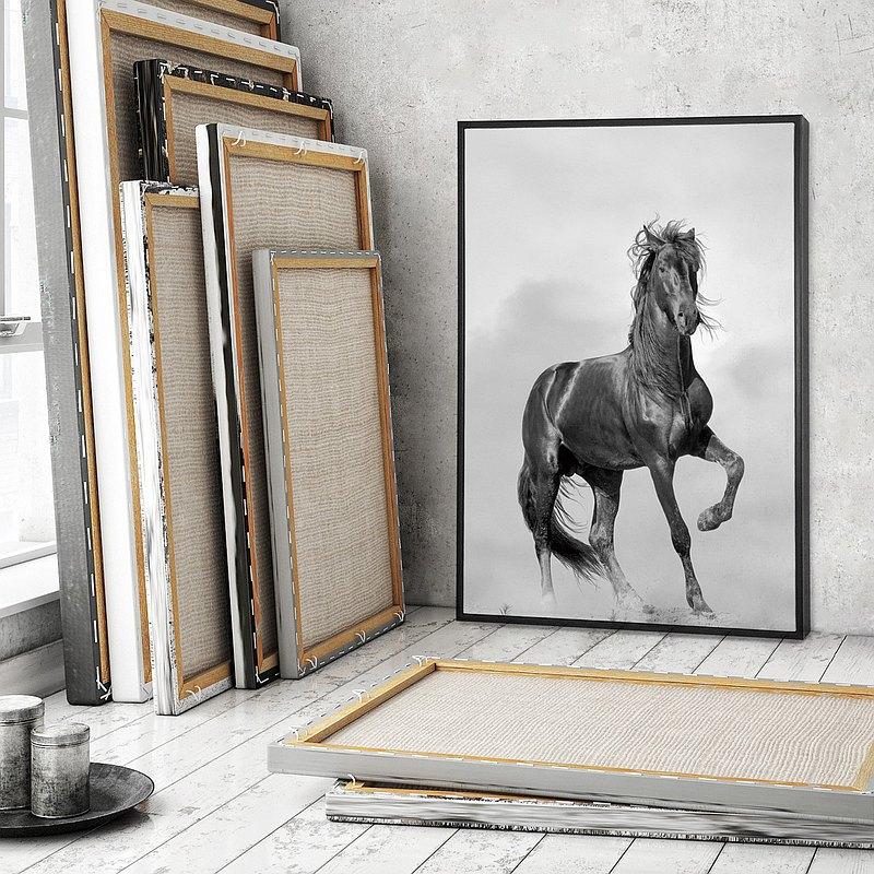 駿馬追風-畫/北歐風/餐桌擺設/沙發背景/辦公室/動物/設計/馬