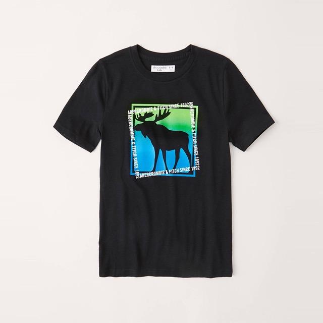 A&F 麋鹿 限量印刷大麋鹿文字短袖圖案T恤(青年款)-黑色