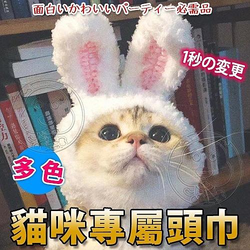 【培菓幸福寵物專營店】dyy》寵物專屬兔耳帽子貓用頭套-S/M號