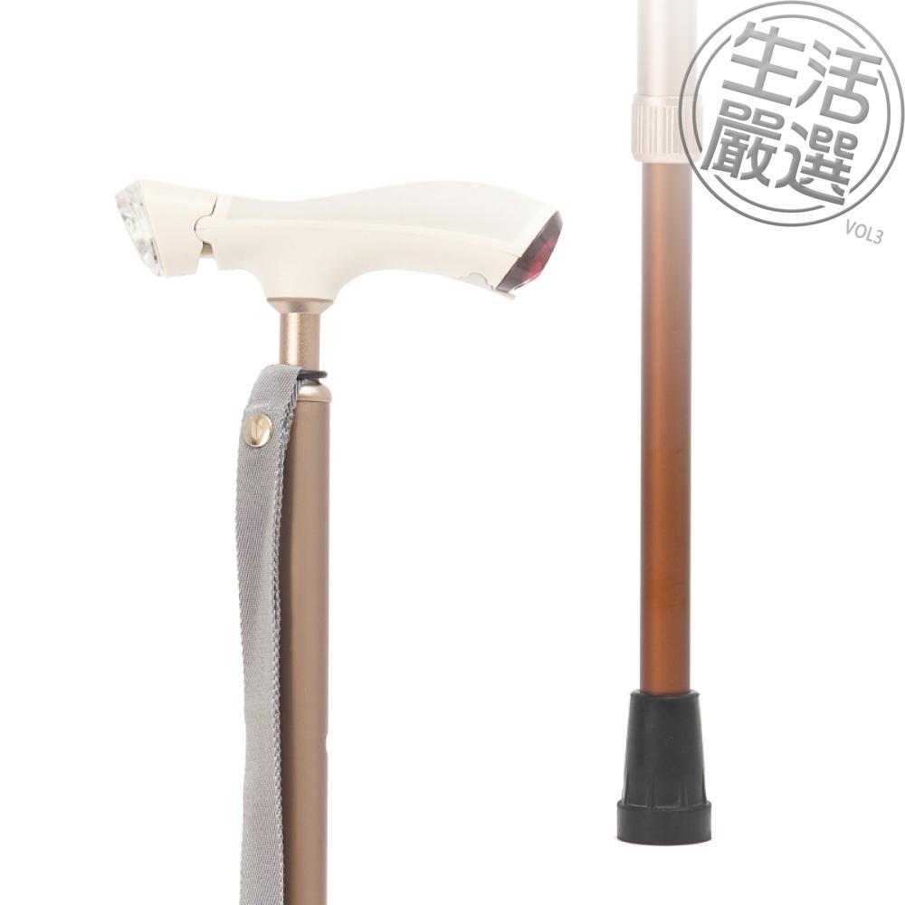 【bles】海鷗經典手杖-金白(GMBS1801-WG)