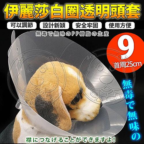 【培菓幸福寵物專營店】 dyy》伊麗莎白圈透明頭套9號25cm