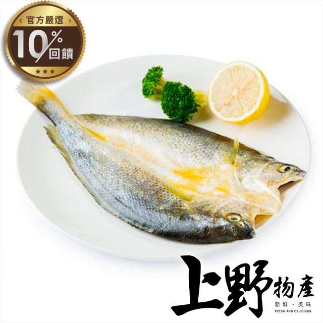 【上野物產】野生黃魚一夜干(600-700g±10%/隻)【LINE官方嚴選】