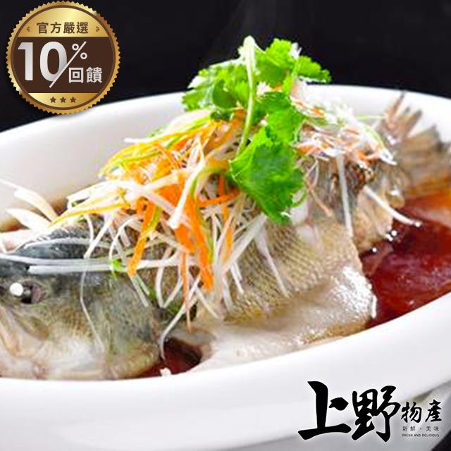 【上野物產】台灣高山純淨無汙染養殖鱸魚(600g±10%/隻)x2隻【LINE官方嚴選】