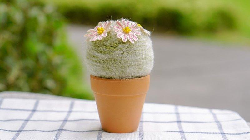 Mammillaria Lenta仙人掌鉤針編織手工仙人掌用來裝飾房子