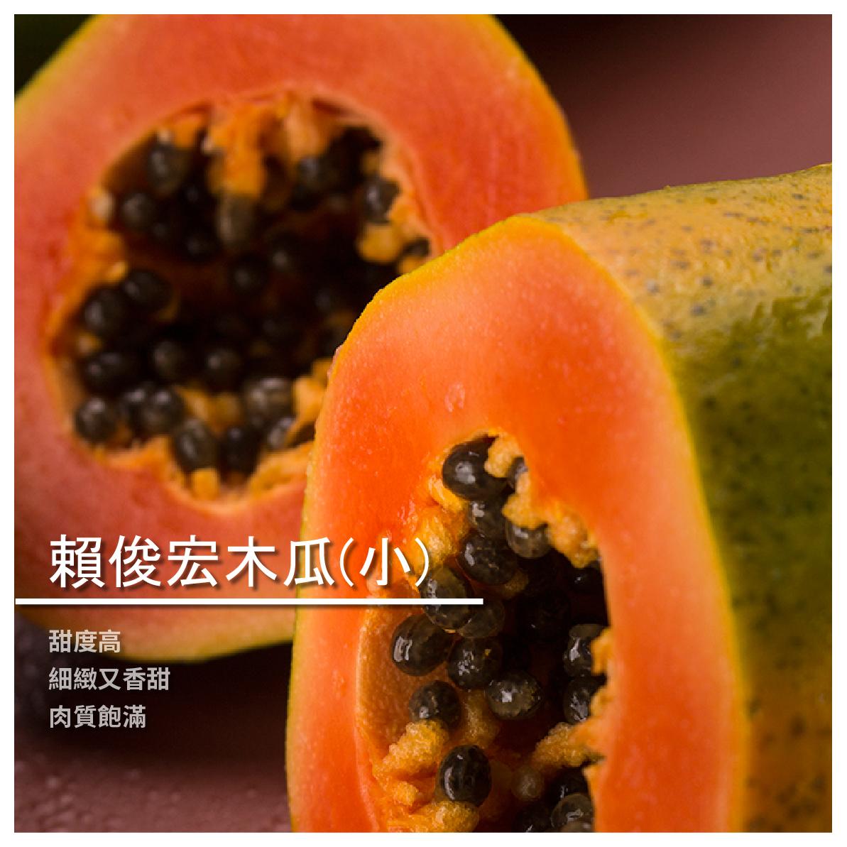 【賴俊宏木瓜農場】賴俊宏木瓜/小顆裝/19~25顆/箱
