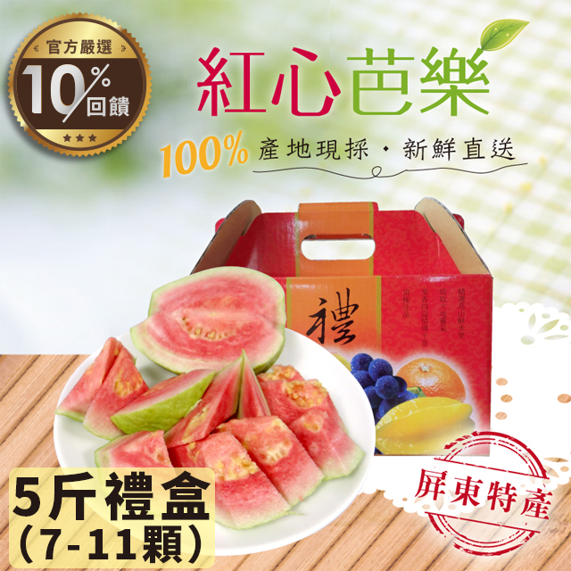 紅心芭樂5斤禮盒(7~11顆)  【LINE 官方嚴選】