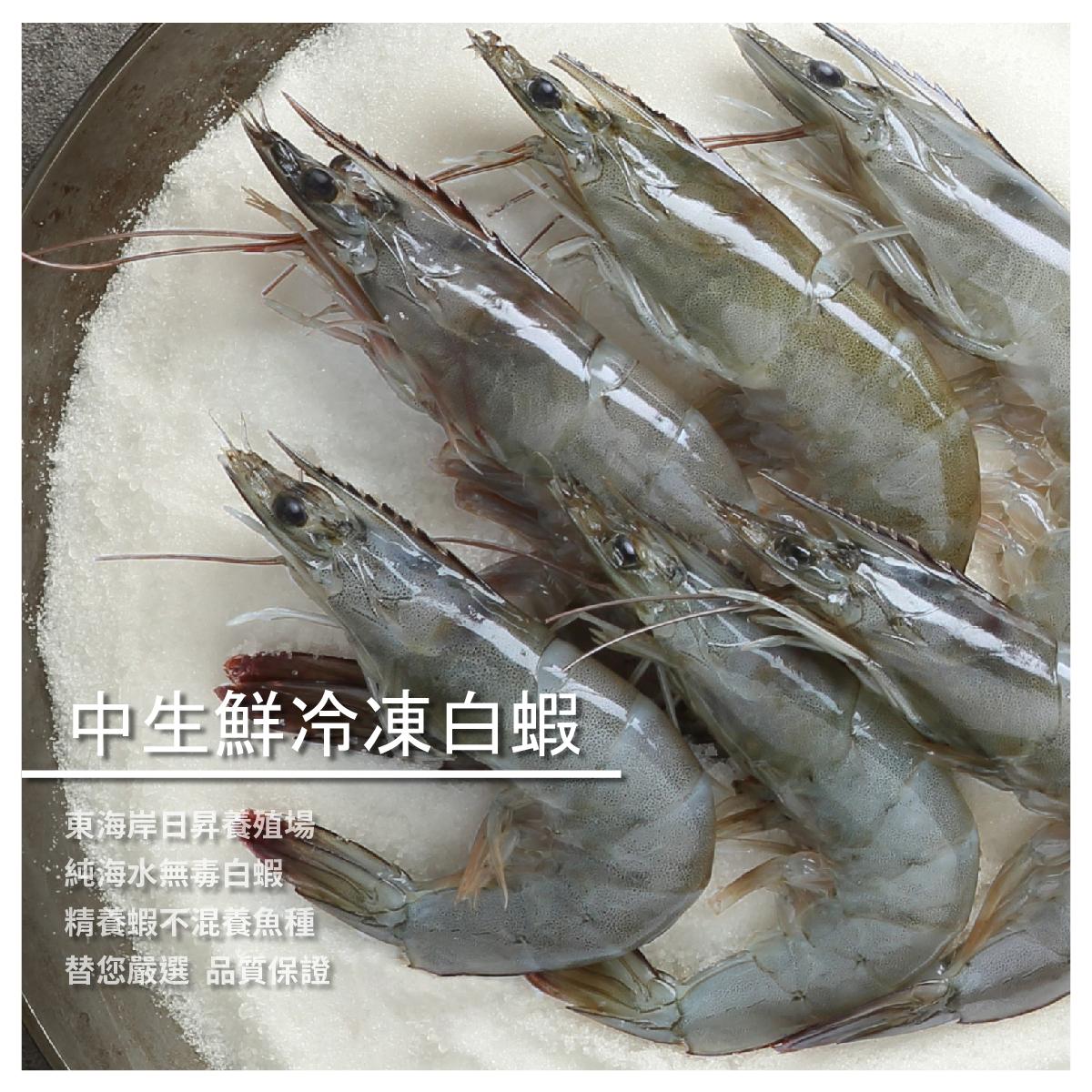 【洋昇水產】中生鮮冷凍白蝦300g/盒
