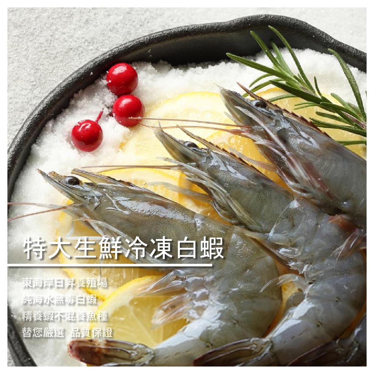 【洋昇水產】特大生鮮冷凍白蝦300g/盒