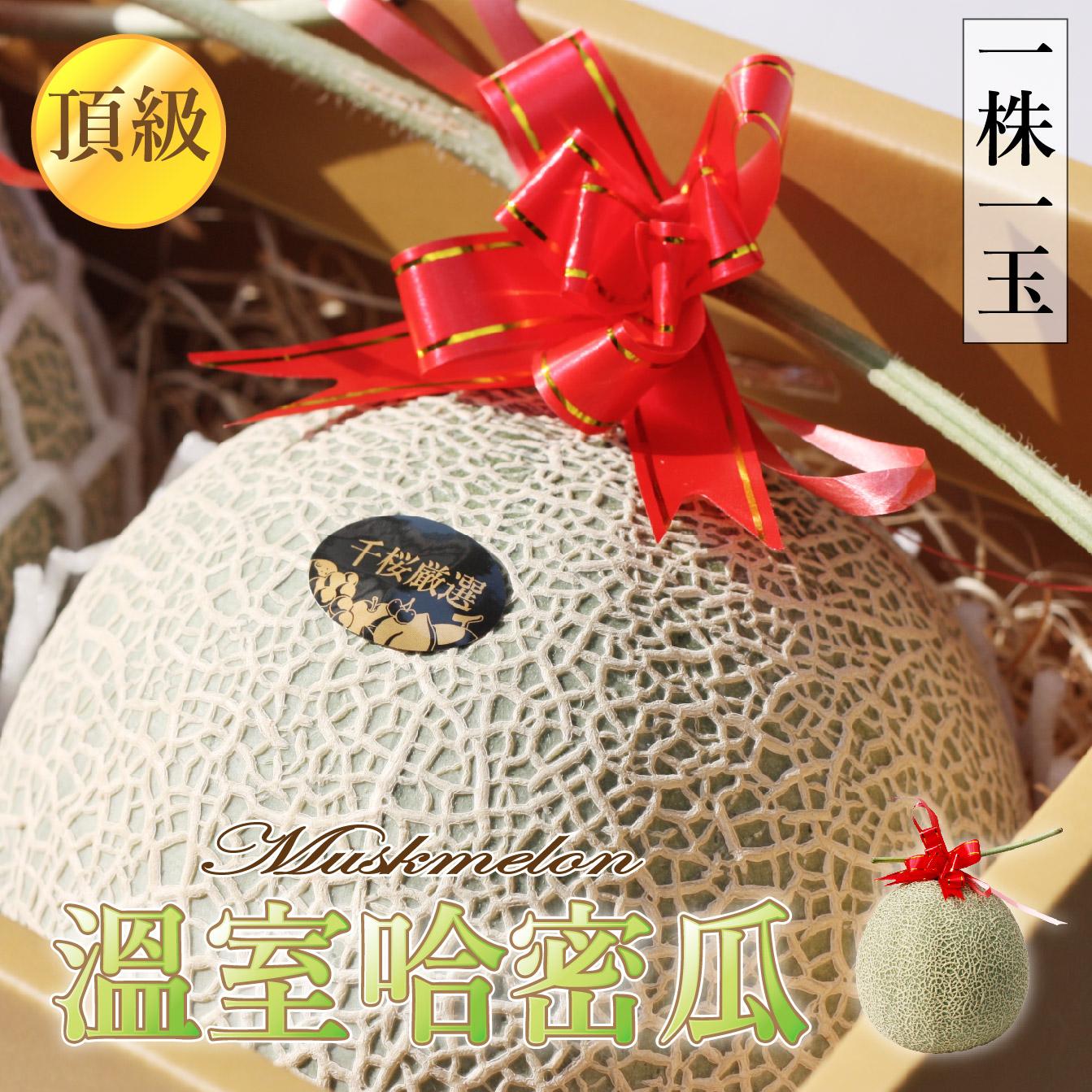 【頂級溫室🍈綠肉網紋哈密瓜】2玉禮盒裝